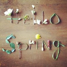 Spring is here! April Showers will bring May Flowers; and May flowers will bring June bugs! Grand Opening of my business - Hello Spring and NEW BEGINNINGS! First Day Of Spring, Spring Is Here, Spring Time, Spring Summer, Happy Spring, Spring 2014, Spring Break, Spring Food, Spring Vacation