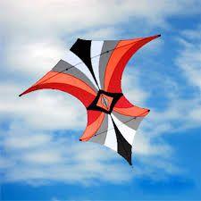 Risultati immagini per robert brasington kites