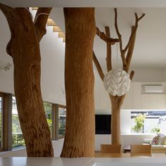 """The two trees stood in the way of construction and had to be removed beforehand, but Hironaka Ogawa was concerned about the connection they had to the family's history. """"These trees looked over the family for 35 years,"""" he explains."""