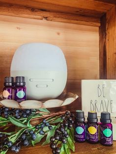 Scentsy Oils, Scentsy Uk, Scentsy Diffuser, Essential Oil Scents, Natural Essential Oils, Natural Oils, Scentsy Catalog, Scented Oil Diffuser, Scented Wax Warmer
