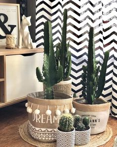Cachepot: aprenda a fazer e veja 50 modelos lindos e funcionais Cachepot: Learn how to make and see 50 beautiful and functional templates Diy Crafts To Sell, Home Crafts, Diy Home Decor, Bathroom Plants, Décor Boho, Luxury Vinyl Plank, Home And Deco, Chairs For Sale, Plant Decor