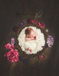 Digital Newborn Photpgraphy Prop brown by CustomLittleThings
