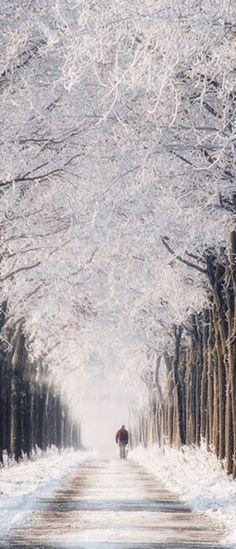 vinter i Sverige #sweden #winter