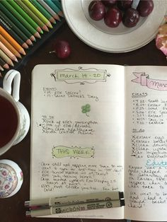 Bullet Journal Show and Tell - Love, Laughter, and a Touch of Insanity