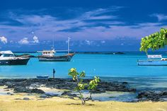 Avec ses plages d'aquarel et son atmosphère sereine, Maurice est l'île préférée des Français. Promenade sur ces îlots hors du temps. un havre de loisirs