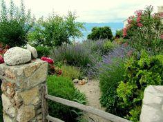 Mediterraner Garten Frische Gartengestaltungsideen