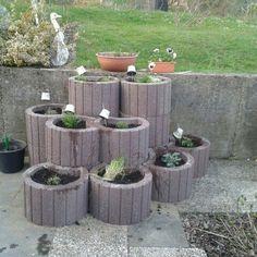 Kraut, Garden Design, Sweet Home, Landscape, Yard Decorations, Gardening, Outdoor, Home Decor, Gardens