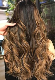 6 Amazing Black Hair Color Ideas Only For You : Have a Look! Hair Color Balayage, Hair Highlights, Ombre Hair, Tiger Eye Hair Color, Hair Color For Black Hair, Vegas Hair, Dark Brunette Hair, Cute Hair Colors, Light Hair