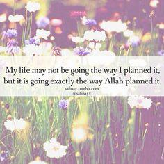 Allah planned