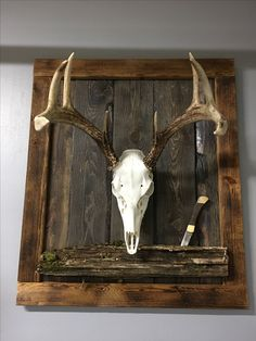 Barn wood european mount display board european mount deer european mount ideas diy enjoy future mounts with a new look and endless ideas solutioingenieria Image collections