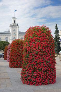 Blumenturm H2400 Terra
