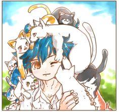 owabird Illustration Blog: まゆげ猫探し4