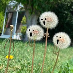 Surprised Dandelions and Frustrated Erasers Come to Life in Delightful Illustrations by Sean Charmatz (Colossal) Funny Illustration, Illustrations, Universal Emotions, Disney E Dreamworks, Doodle On Photo, Photo Instagram, Instagram Posts, Art Mignon, Storyboard Artist