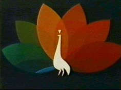 You knew it was time to settle in and watch The Wonderful World of Disney when you saw the NBC Peacock on Sunday night...