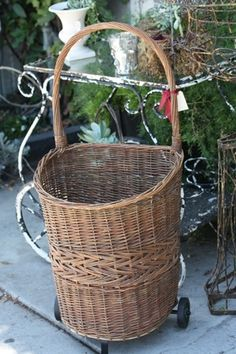 French basket...shopping cart