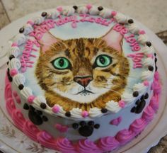 Ices Personalized Birthday Cake Made For Cats To Eat Cat