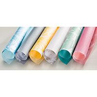 Perfectly Artistic Designer Series Paper Coordinating colors: Basic Gray, Bermuda Bay, Blushing Bride, Crumb Cake, Crushed Curry, Daffodil Delight, Melon Mambo, Mint Macaron, Smoky Slate, Soft Sky, Tempting Turquoise, Whisper White