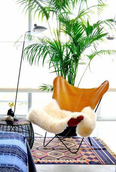 kentia-palme lederstuhl schafsfell