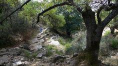 Despeñaperros quiere ser Dorne http://www.rural64.com/st/turismorural/Despenaperros-quiere-ser-Dorne-5469