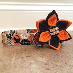 Dog collar halloween dog collar orange by ChicPoochBoutique