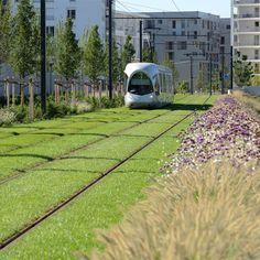 Ligne de tramway T4 – Phase 2 – Lyon (69) | Ilex Paysages & Urbanisme