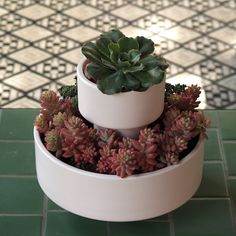 """There are 3 parts to this planter, the smallest pedestal act as a saucer. Every so often it just gets emptied, simple. The other 2 vessels can be used in conjunction to form a """"wedding cake"""" or as separate planters."""