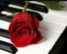 <3  #red #floral #rose