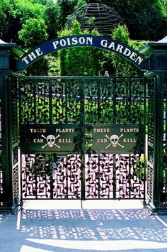 The Poison Garden at Alnwick (Hogwarts) Castle...maybe the LAST place to visit on my bucket list.