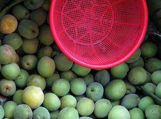 china--hong-kong--kowloon--daytime--street--food--fruits--red-plastic--2015-04-24--ribba
