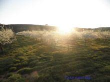 Paisajes de Navarra, ideal para turismo rural en Navarra, sitios con encanto en Navarra