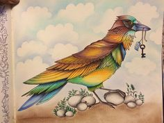 Image result for lion adult coloring ideas