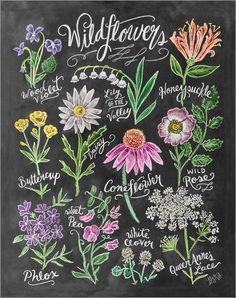 Lily & Val - Wildblumen in Kreide