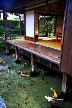 연못 + 마당