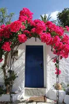 Wonderful Bougainvillea Trellis Ideas Bougainvillea Vines – Elegantly Twine Up a Trellis Wonderful Bougainvillea Trellis Ideas. Bougainvillea has been considered as one of the bright and colo… Bougainvillea Trellis, Ab Ins Beet, Beautiful Flowers, Beautiful Places, Tomato Garden, Fruit Garden, Garden Plants, House Plants, Deco Floral