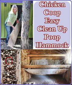 The Homestead Survival   Chicken Coop Easy Clean Up Poop Hammock   Homesteading - Chickens - http://thehomesteadsurvival.com