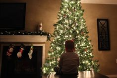 Christmas tree picture with a toddler! Turn out all lights but the tree. In manual mode, lower shutter speed to 1/15 or so, open up aperture all the way (on my kit lens this was only f/3.5), and bump ISO up to around 1600. Focus on the tree and put baby Einstein on the iPhone to keep the toddler still. Balance your camera on a surface to avoid as much shake as possible. Good luck!