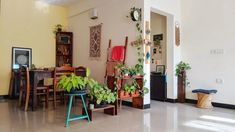 Jayati and Manali share their home tour as the science home décor - The dinning room are decorated with wall hanging table runner, indoor green plants, frames and vintages Indian Room Decor, Ethnic Home Decor, Indian Bedroom, Indoor Green Plants, Entrance Decor, Home Room Design, Decorating Blogs, House Tours, Decor Styles