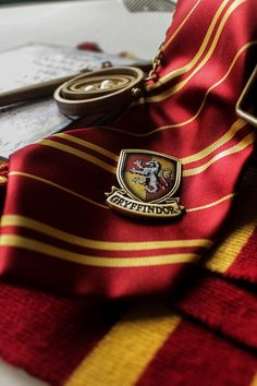 FUCK YEAH, GRYFFINDOR LIONS