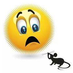 Emoticon afraid of mouse Smiley Emoji, Smiley T Shirt, Smiley Emoticon, Funny Smiley, Emoticon Faces, Funny Emoji, Cute Emoji, Smiley Faces, Emoticons Do Whatsapp