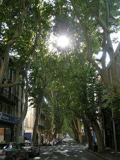 https://flic.kr/p/52326b | avignon | Avignon,FRANCE
