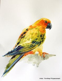 Hey, I found this really awesome Etsy listing at https://www.etsy.com/listing/230323270/parrot-bird-bird-watercolor-painting