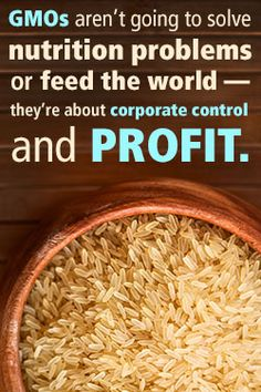 GMOs aren't going to solve nutrition problems or feed the world - they're about corporate control and profit