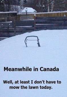 Meanwhile in Canada. ''Well, at least I don't have to mow the lawn today. Canadian Memes, Canadian Things, Canadian Humour, Canadian History, Canada Funny, Canada Eh, Canada Jokes, Robert Frost, Cool Countries