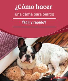 ¿Cómo hacer una cama para perros fácil y rápido?  Sorpréndete con estas ideas de cama para perros. Modelos muy originales que los puede hacer en unos cuantos minutos. ¿A qué esperas? ¡Manos a la obra! #manualidades #cama #perro #consejos
