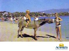 #historiadeacapulco Los burros de la Isla de la Roqueta en Acapulco. ACAPULCO EN EL TIEMPO. En la Isla de la Roqueta, hace varios años, se encontraba como atracción un burro que servía para transportar diferentes cosas como el combustible del faro, pero lo más sorprendente es que sabía beber de las botellas y podías tomarte con él, la foto para el recuerdo. Te invitamos a descubrir más sobre la historia de Acapulco, durante tus próximas vacaciones. www.fidetur.guerrero.gob.mx