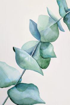 Watercolor Plants, Watercolor Wallpaper, Green Watercolor, Watercolor Leaves, Watercolor Drawing, Abstract Watercolor, Watercolor Illustration, Watercolour Painting, Eucalyptus
