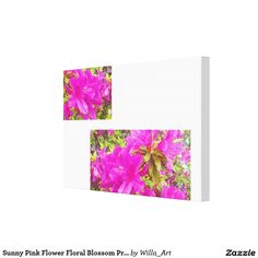 Sunny Pink Flower Floral Blossom Print Canvas - Turn memories into a work of art…