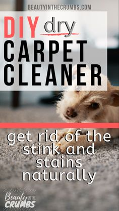 Non Toxic Homemade Dry Carpet Cleaner That Is Actually Tough Ungiftiger Selbst Gemachter Trockener Teppich Reiniger Der Wirklich Stark Ist - Image Upload Services Pet Carpet Cleaners, Natural Carpet Cleaners, Diy Carpet Cleaner, Carpet Smell, Carpet Stains, Cheap Carpet, Deodorant, Dry Carpet Cleaning, Cleanser