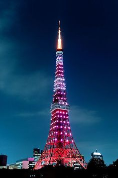 Tokyo tower at night! Places To Travel, Places To See, Places Around The World, Around The Worlds, Tokyo Skyline, Japon Tokyo, Tokyo Night, Tokyo Olympics, Tokyo Tower