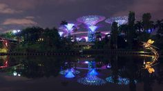 dragonfly and kingfisher lakes gardens by the bay singapore invite you to dive below